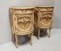 Fabulous French Bergere Bedside Cabinets (2 of 12)