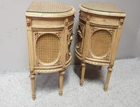 Fabulous French Bergere Bedside Cabinets (4 of 12)