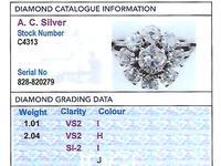 3.05 ct Diamond and Palladium Cluster Ring - Antique and Vintage (6 of 9)