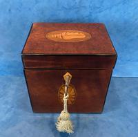 18th Century Harewood Inlaid Single Mahogany Tea Caddy (17 of 18)