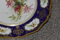1904 Royal Worcester Plate with a Spray of Hand Painted Flowers & Snail (3 of 4)