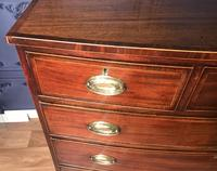 Georgian Mahogany Bow Front Chest of Drawers (14 of 16)