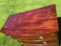 George III Small Mahogany Bow Front Chest of Drawers (3 of 11)