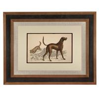 Hand Coloured 'Hound' Lithograph. Goldsmith 1875 (4 of 4)