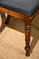 Set of Six William IV Dining Chairs (3 of 7)
