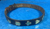 Victorian Brass Mounted Hide Dog Collar (8 of 10)