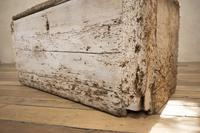 19th Century Rustic Painted Country House Trunk - Coffee Table (10 of 16)