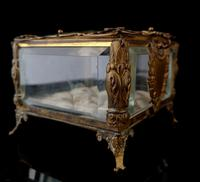 Antique French jewellery casket (3 of 14)