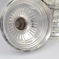 Fine Victorian Silver Trophy Cup & Cover Mappin & Webb (7 of 9)