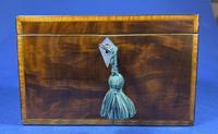 18th Century Mahogany Twin Tea Caddy with Shell Inlay (13 of 17)
