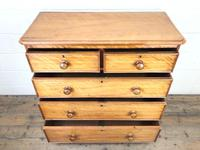 Victorian Satin Birch Chest of Drawers (3 of 9)