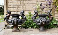 Pair of Cast Iron Garden Urns with Cherubs & Rams Heads