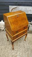 Lovely Antique Design Burr Walnut Bureau (2 of 9)