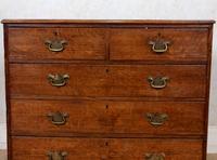 Georgian Oak Chest of Drawers 18th Century (3 of 12)