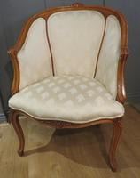 Louis XVI Style Tub Backed Armchair Newly Upholstery (3 of 9)
