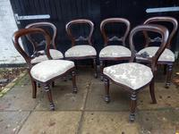 Set of 6 Balloon Back Dining Chairs