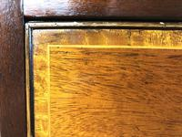 Quality 20th Century Bow Front Mahogany Chest of Drawers (M-1537) (4 of 11)