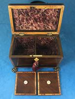 Regency Black Walnut Sarcophagus Twin Section Tea Caddy (11 of 11)