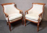 Pair of French Empire Style Armchairs (7 of 13)