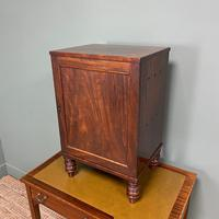 Spectacular Small Regency Antique Mahogany Collectors Cabinet (5 of 8)