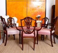 6 Dining Chairs Hepplewhite Mahogany Leather 19th Century (14 of 15)