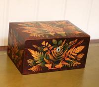 Mauchline Fernware Box (2 of 9)