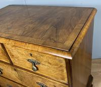 Attractive Walnut Chest of Drawers (7 of 7)