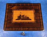 William IV Early Mosaic Tunbridge Ware Table Box (7 of 20)