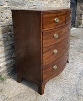 Large Regency Mahogany Bow Front Chest of Drawers (3 of 19)