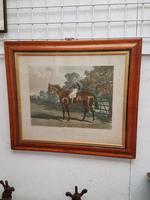 Victorian Horse Engraving