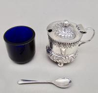 Small Victorian Silver Mustard Pot by William Devenport, Birmingham 1895 (5 of 8)