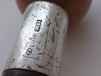 Walking Stick Cane 1901 Hallmarked Silver Pommel Blackthorn Shaft Carnelian Top (7 of 12)