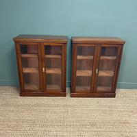 Pair of Victorian Walnut Antique Bookcases (4 of 7)