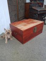 Oriental Camphor Box (2 of 9)