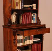 Open Bookcase in Burl Walnut - 19th Century (12 of 13)