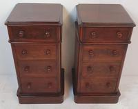 Pair of 19th Century Mahogany Bedside Chests (3 of 4)