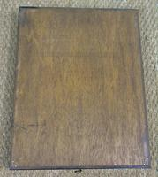 Fabulous Antique Collection Cased Butterfly & Insect Specimens (8 of 8)