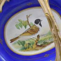 Fine & Large Alcock Rococo Porcelain Ornithological Basket c.1845 (11 of 17)
