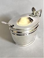 Handsome Victorian Mustard Pot & Spoon (3 of 7)