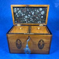 George III Satinwood Twin Tea Caddy with Prince of Wales Inlay (8 of 15)