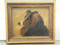 Pair of Scottish 19th Century Oil Paintings Rough Collie Dog Portraits After George Washington Brownlow (24 of 49)