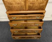 Burr Walnut Cupboard Over Chest (12 of 15)