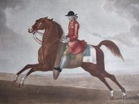 "18th century etching of ""Childers the Fleetest Horse that Ever run at Newmarket"" by Houston after Seymour (2 of 5)"