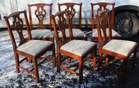 1960 Set 6 Mahogany Georgian style Dining Chairs in a Pale Pattern. (2 of 3)