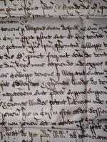 1440 A.D Medieval James ll of Scotland Period Vellum Document (8 of 13)