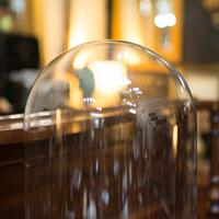 Antique Display Dome, English, Glass, Mahogany, Taxidermy, Showcase, Victorian (7 of 10)
