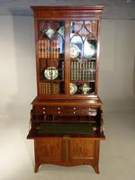 Attractive Regency Period Mahogany Secretaire Bookcase (3 of 5)