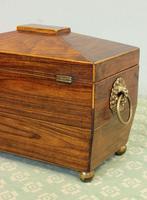 Antique Rosewood Tea Caddy (14 of 15)