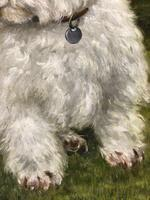 20th Century Oil Painting Animal Portrait Highland Westie White Terrier Dog (3 of 12)