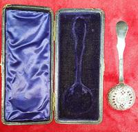 Cased Sterling Silver Sugar Sifter Spoon (3 of 5)
